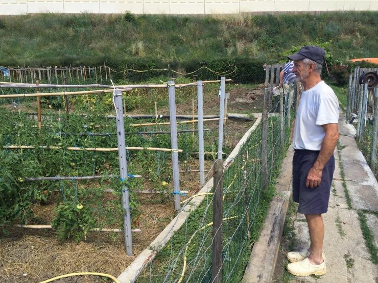 Jardinier colombophile Cenon - juillet 2016.jpg
