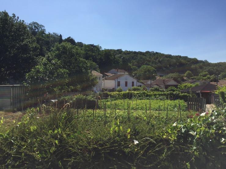Jardins cheminots Bas Cenon - juillet 2016.jpg